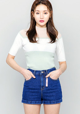Pastel color half neck knitted top