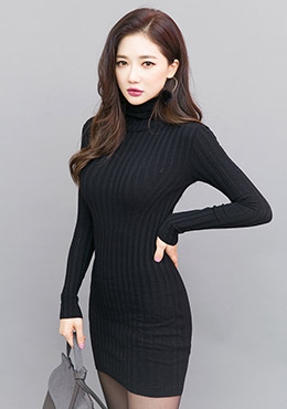 Bodycon Turtle Neck Mini Dress