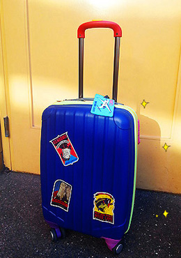 Blue Color Blocked Luggage Bag