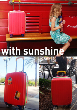 Red Color Blocked Luggage Bag